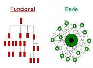 Organizações em rede